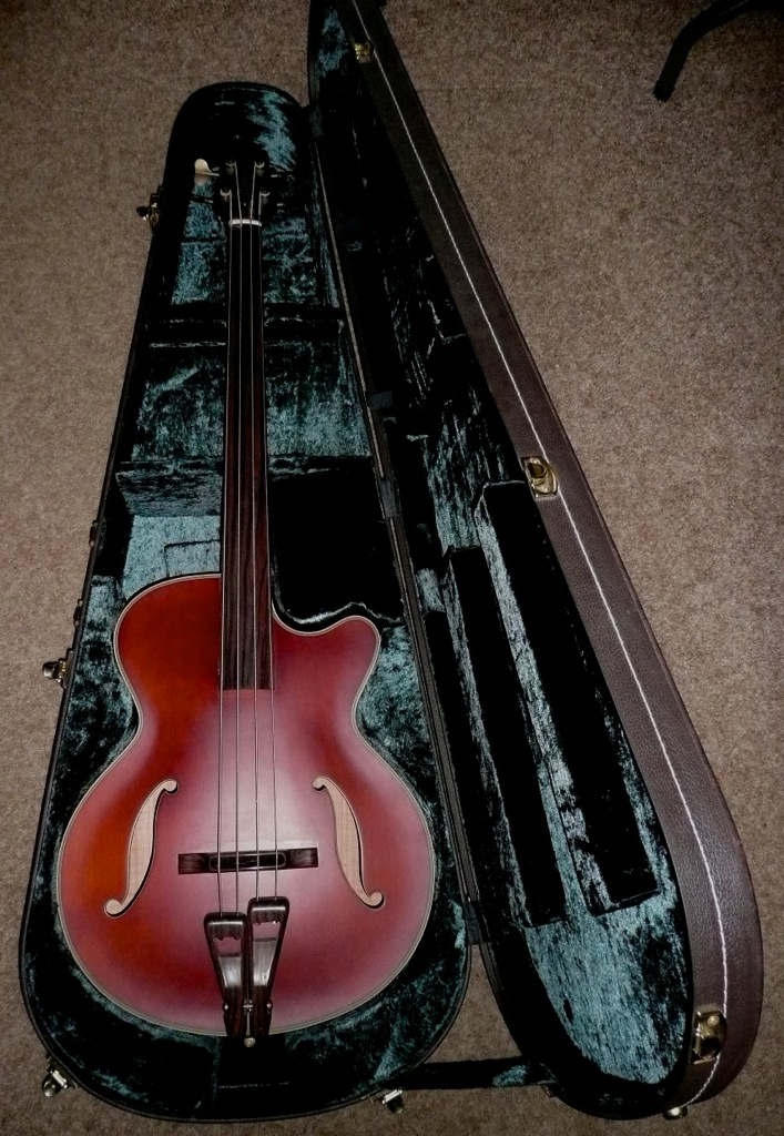 Takamine B10 Upright Electric Acoustic Bass Guitar